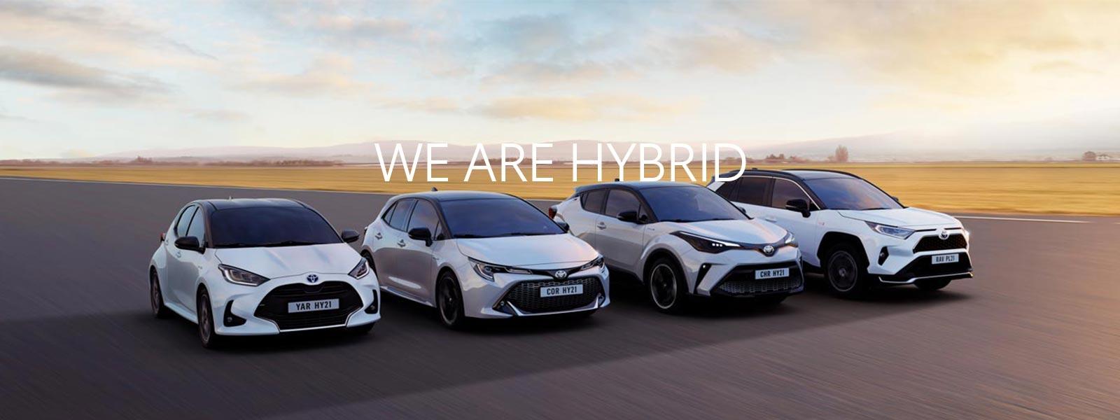 We Are Hybrid